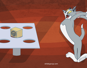 Magento Performance Optimization – Decrease Loading from 6 to 2 Seconds
